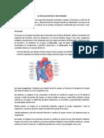 TRABAJO DE BIOLOGIA  COMPLETO DE CAMILO MEDINA.docx