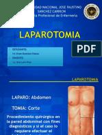 Laparotomia Exploratoria BCA