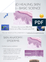 Wound Healing Basic Science