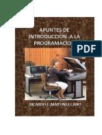 Apuntes de Introduccion a La Programación Parte I