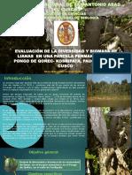 Evaluacion de La Diversidad y Biomasa de Lianas en Una Parcela Permanente de Pongo de Qoñec Cusco