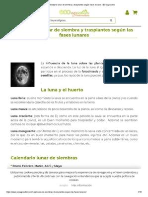 Calendario Lunar De Siembra Y Trasplantes Según Fases Lunares Ecoagricultor Pdf Huerta Cookie Http