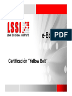Yellow Belt.pdf