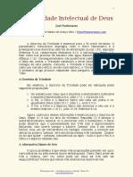 A TRIUNIDADE INTELECTUAL DE DEUS - JOEL PARKINSON.pdf