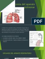 Anatomia del aparato pulmonar.pptx