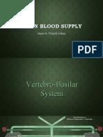 Brain Blood Supply