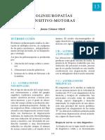 13-polineurop.pdf