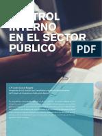 Control.interno.coso Sector Publico