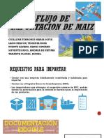 FLUJO_DE_IMPORTACIÓN[1]