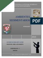 AMBIENTES_SEDIMENTARIOS_PETRO.docx
