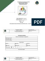 PROGRAMA INVES.pdf