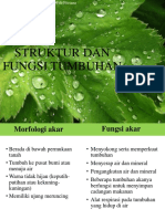 Struktur dan fungsi tumbuhan ppt