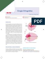 ortognatica tipos.pdf