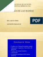 Semio de Las Mamas