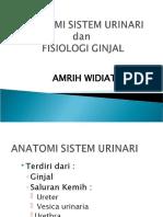 FISIOLOGI GINJAL.ppt