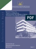 PSY Posttraumatischer Stress bei der polizeilichen und militärischen Aufgabenerfüllung