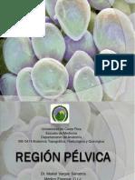 Tema 35 Región pélvica - Dr. Vargas