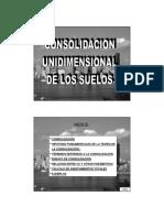 CONSULIDACION UNIDIMENCIONAL.pdf