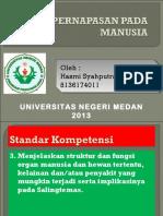pptpernapasanmanusia-131009055435-phpapp02