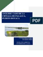 ANÁLISIS-DE-CASO-DE-LA-CIÉNAGA-DE-PALAGUA-correcciones.docx