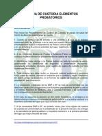 Cadena de Custodia (1).pdf