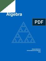 Curso de Algebra - Alexey Beshenov - Universidad de El Salvador - 2018