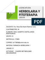 r Castellanos Cuadro-2