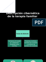 Descripción Cibernética de La Terapia Familiar