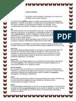 PLANTAS MEDICINALES DEL ECUADOR.docx