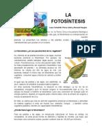 articulodefotosntesis-130502174457-phpapp02