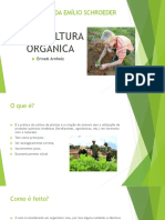 Agricultura orgânica palestra.pptx