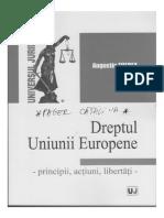 Dreptul Uniunii Europene( Icecream)