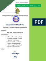 Informe Estudio de Impacto Ambiental-terminado