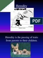 hereditypowerpoint