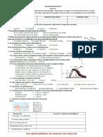 Diagnostico Grado 9 en PDF