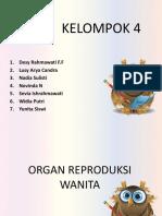 KELOMPOK 4 BIOLOGI.pptx