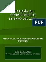 Patologa Del Codo Interno