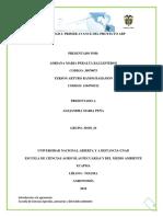 Consolidacion Trabajoactividad 2_ Primer Avance Del Proyecto ABP _grupo 10 (1)