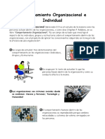 Comportamiento Organizacional e Individual.docx