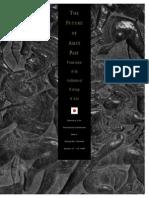 CORZO, M.a.(Ed.) - The Future of Asia's Past - Chiang Mai Conference 1995