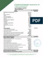 Informe Fiananciero ANPA. Enero 2019