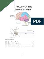 Pathology of the Nervous System.pdf