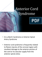 Anterior Cord Syndrome Med   Back.pptx