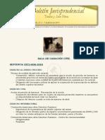 Boletín jurisprudencial N.º 2 - 2019