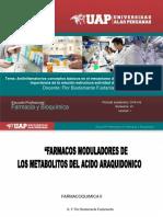 Antiinflamatorios_conceptos_básicos_en_el_mecanismo_de_acción_de_los_fármacos,_importancia_de_la_relación_estructura_actividad_del_fármaco[1].pdf
