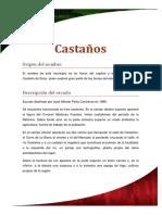 Mini Monografia Castaños