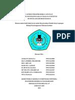 LAPORAN PRAKTIK KERJA LAPANGAN.docx