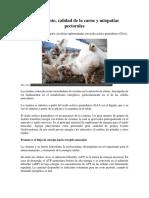 Rendimiento Arsenico Pollos