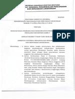 Perdirjen PPKL P.9 Tahun 2018.pdf