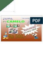 merk camelo